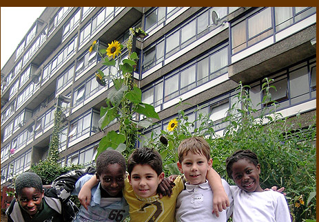 Michael, Jordan, Stefan, Johan and Hope, the Guerrilla Gardening Youth, with their towering sunflowers outside Perronet House