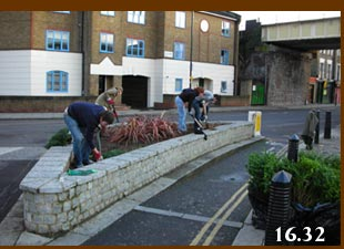 Guerrilla gardenings (on Garden Guerrillas as some call us) in Hawley Road, Camden. in Hawley