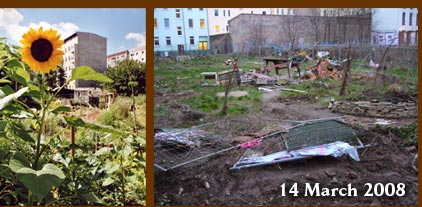 Help Save This Guerrilla Garden