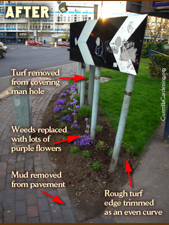 The improvements after guerrilla gardening