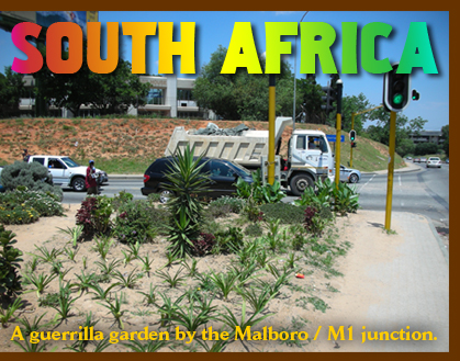 Guerrilla gardens of Johannesburg, South Africa