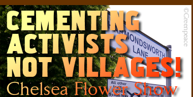 Cementing Activists Not Villages!
