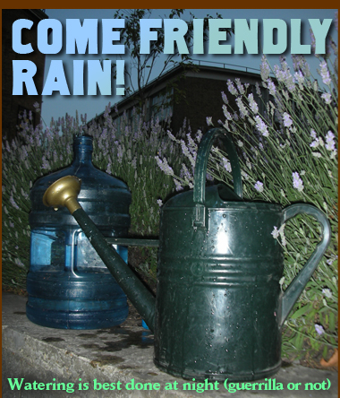 Come Friendly Rain!
