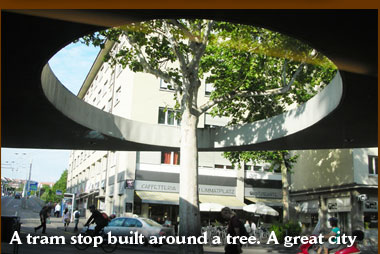 A tram stop built around a tree. A great city.