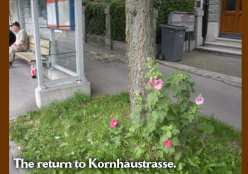 The return to Kornhaustrasse