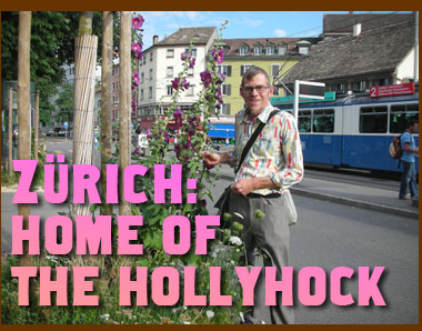 Zurich: Home of the Hollyhock