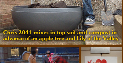 Chris 2041 mixes in top soil and compost in advance of an apple tree and Lily of the Valley