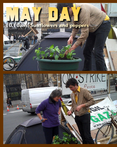 May Day 2010. Richard and Lyla join Maria in Parliament Square to plant sunflowers, peppers and strawberries