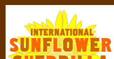 International Sunflower