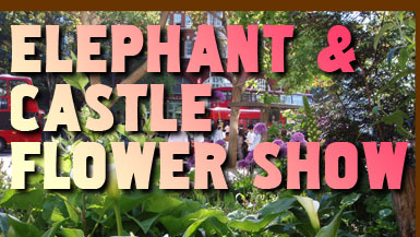 Elephant and Castle Guerrilla Gardening Flower Show
