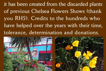 it has been created from the discarded plants of previous Chelsea Flowers Shows (thank  you RHS). Credits to the hundreds who  have helped over the years with their time, tolerance, determination and donations.
