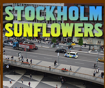 Stockholm Sunflowers
