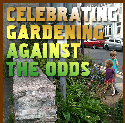Celebrating Gardening Against The Odds