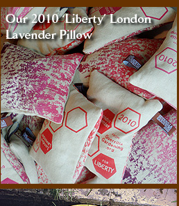 Our 2010 'Liberty' London Lavender Pillow for Guerrilla Gardening org