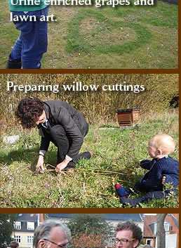 Richard preparing willow cuttings