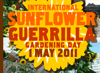 International Sunflower Guerrilla Gardening Day 1 May 2011