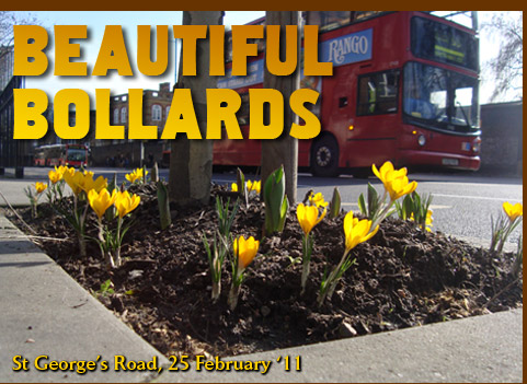 Beautiful Bollards