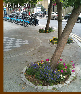 Union Street Guerrilla Urban Physic Garden 12 July 2011
