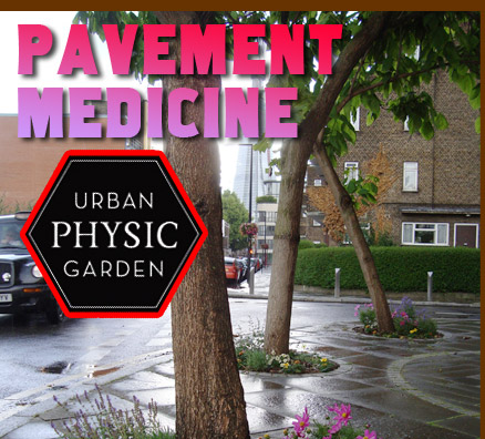 Pavement Medicine - Urban Physic Garden