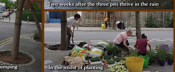 In the midst of planting