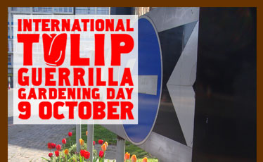 International Tulip Guerrilla Gardening Day
