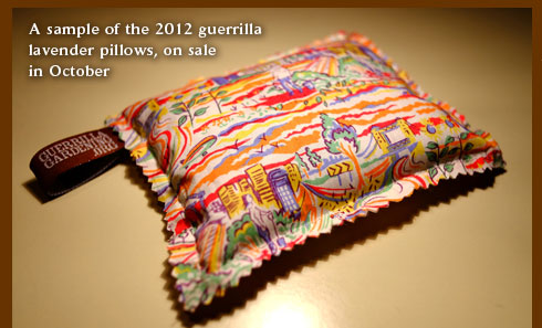 A sample of the 2012 guerrilla gardening lavender pillows on sale October
